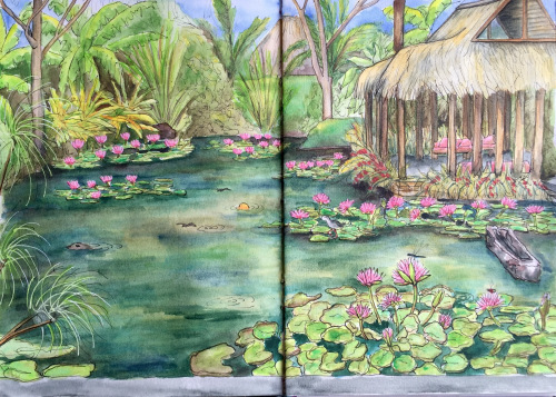 Bali Journal - Pond Life
