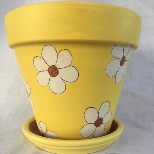Daisy on yellow